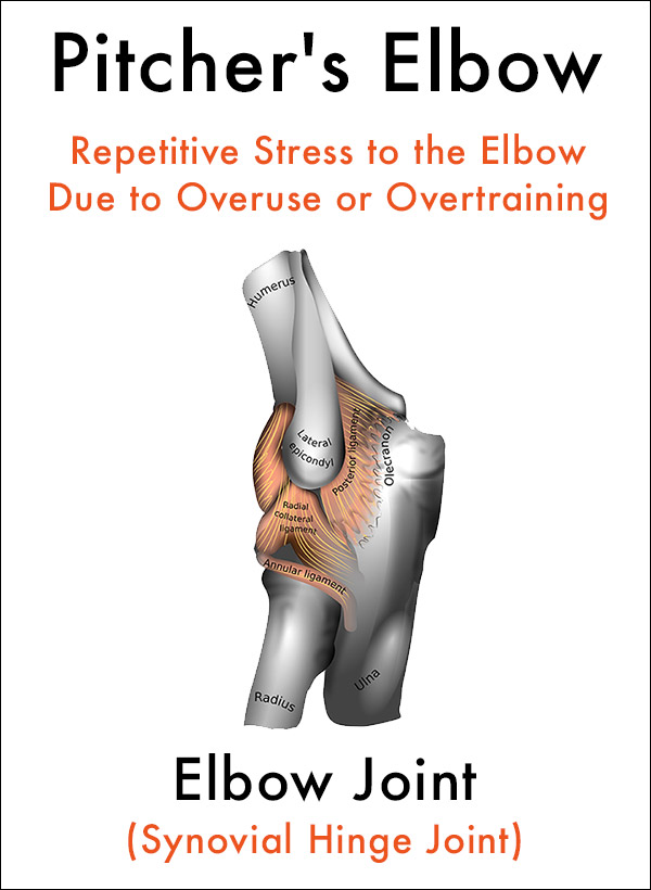 Pitchers Elbow Joint Pain